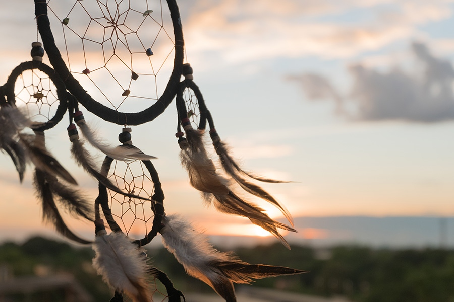 Indigenous Programs